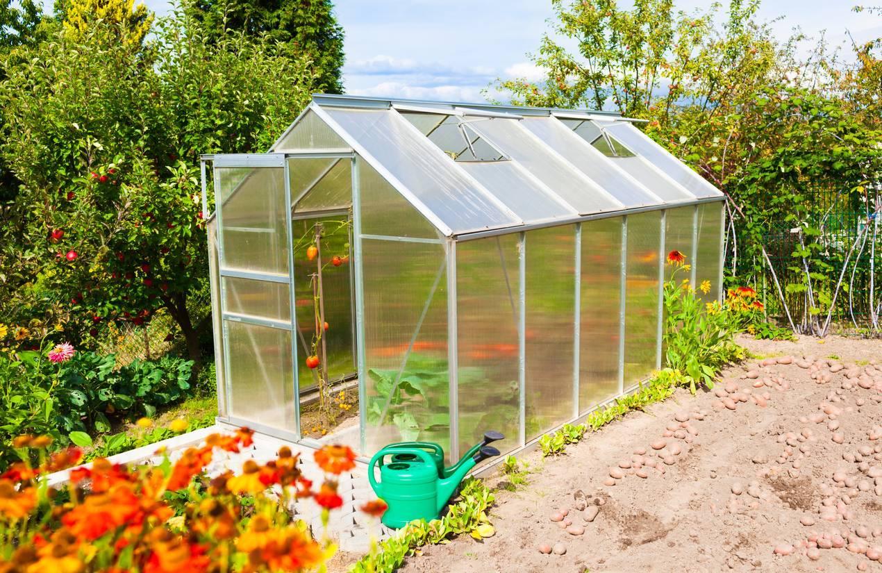 serre de jardin pour potager